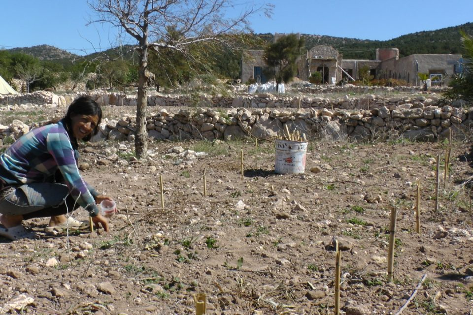 gardening at Azrou Issa