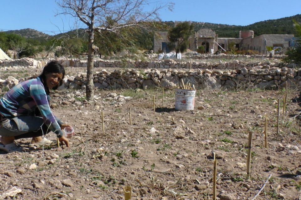 gardening at Azrou Issa